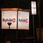 Sylvan ply